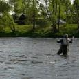Povodí Ohře zpříjemní rybářům zahájení rybářské sezony na pstruhové vodě pod vodní nádrží Nechranice. K této příležitosti sníží průtok v […]